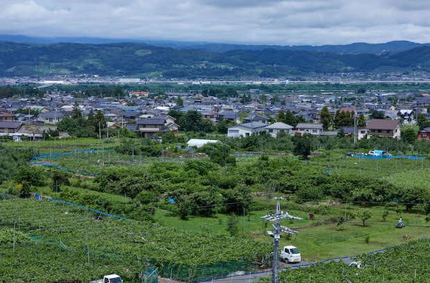 長野県小布施町。古くから多くの人と文化が行き交った小布施には、昔の街並が残り、風土を活かした伝統の農業が今も継承されています。