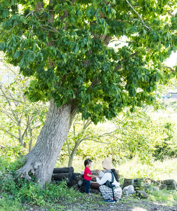 來嶋さんの自宅の周りには木や植物もたくさん。すぐ近くには川が流れています。