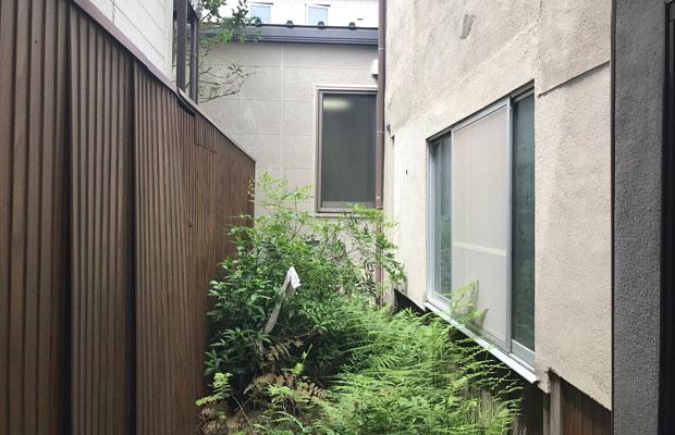 ビフォー:雑草が生い茂る裏庭。茂みの奥に小祠があります。(撮影:松村康平)
