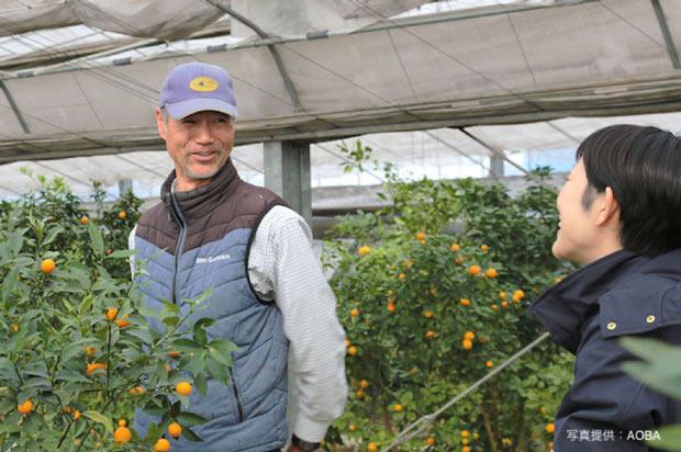 岡山の笠岡湾干拓地で、大実金柑などを生産している〈BriGarden〉さん。