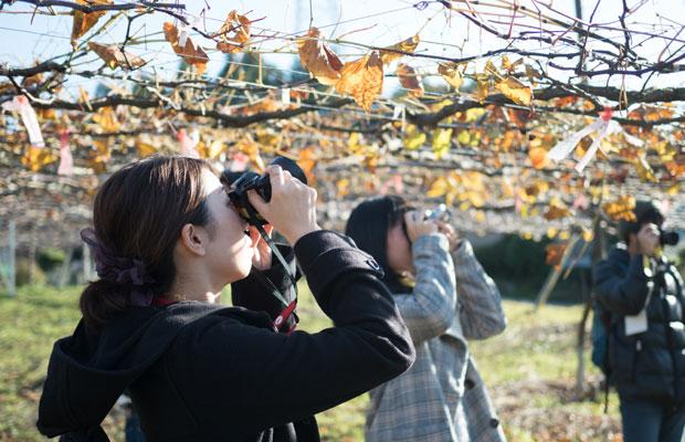 〈小豆島カメラ〉もサポートしていただいているオリンパスさんが参加者全員にミラーレス一眼レフカメラを貸し出してくれました。