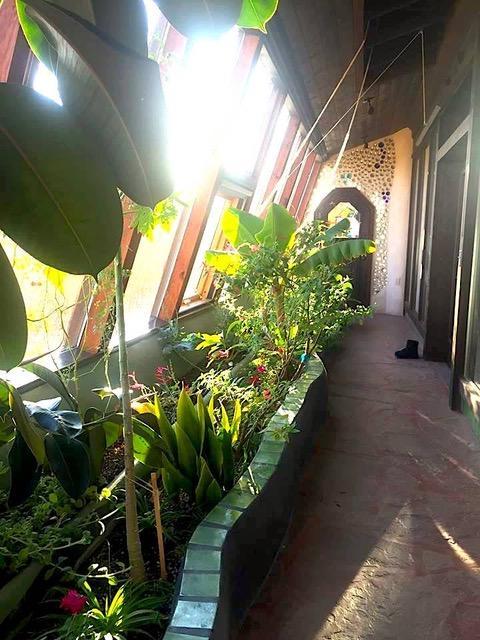 アメリカのニューメキシコ州のタオスというまちにあるアースシップのサンルーム。雪が積もる冬に訪れたときも室内は暖かく、植物は生き生きと育っていたという。(写真提供:倉科智子)