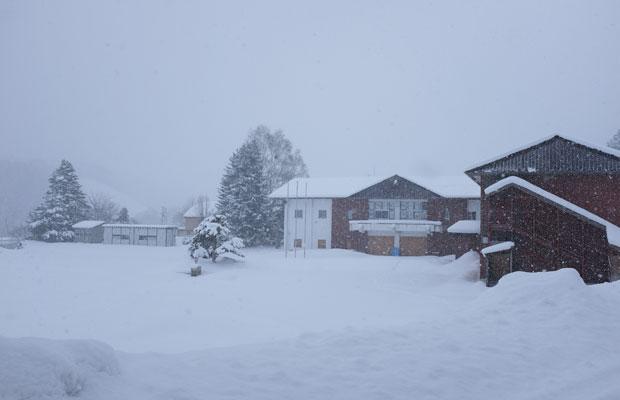 雪に包まれた旧小学校。豪雪地帯ではあるが今年は雪が少なく、建物に雪の負荷がそれほどかからないのは幸いな点だと思う。