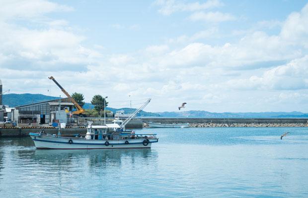 四海(しかい)漁港から漁に出ていく漁船。
