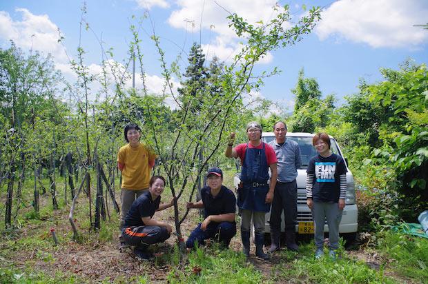 育てているりんごの木々と、医果同源りんご機能研究所のスタッフ。
