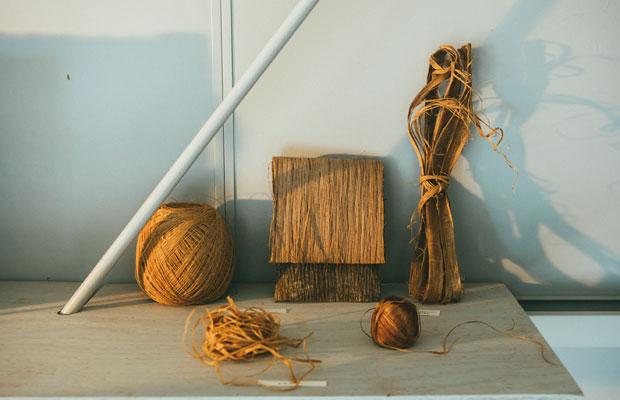 シナ布の素材