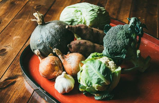 仲塚家の畑でとれた無農薬野菜。佐渡では近年、トキと共生し生物多様性を保全する「生きものを育む農法」も行われている。