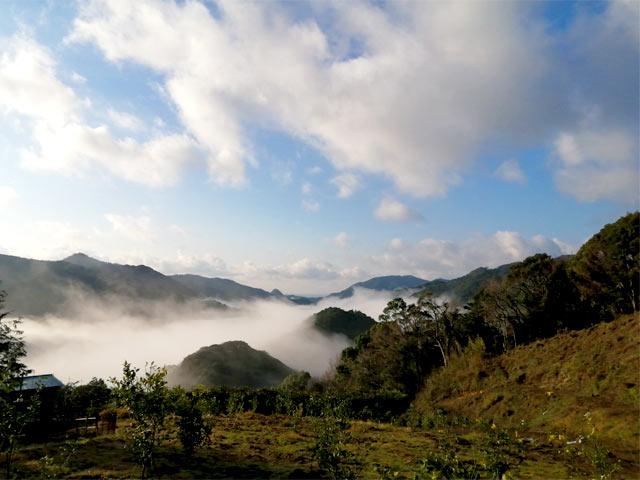 下田の山々を雲海が覆う