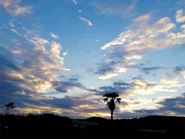 下田の山の風景