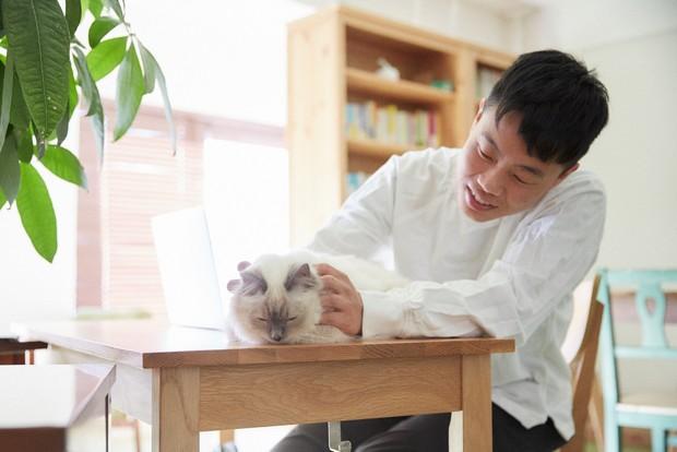 nyansオフィスでは、もちろん仕事中も愛猫と一緒。