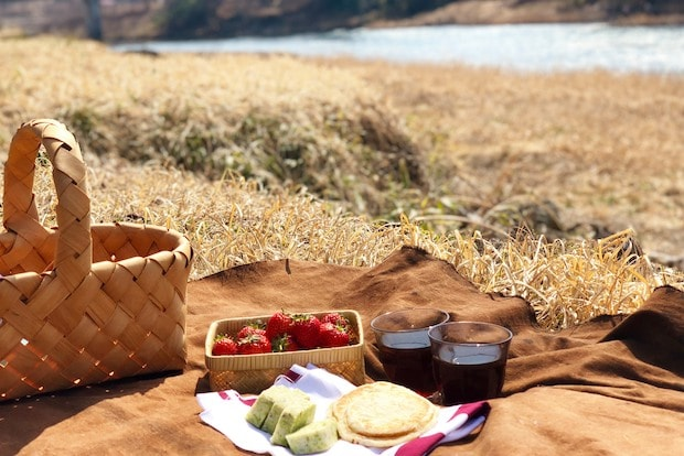 馬淵川でのピクニックの様子。穏やかな景色を眺めながら、産直で購入できる二戸産のフルーツや郷土菓子、南部せんべいなどを囲んでお茶をするのも楽しい。