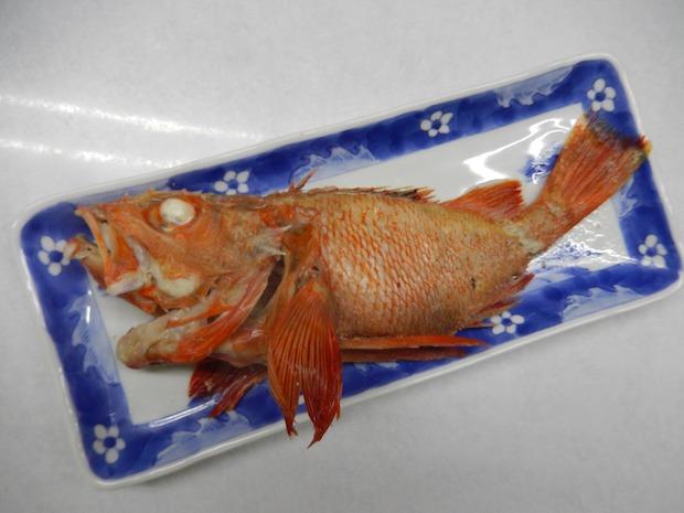 宿の看板料理のメンメの湯煮。メンメ(キンキ)を羅臼の海洋深層水だけで煮た素材の味を生かしたシンプルな料理。こちらのメンメは大きさ約30センチ!