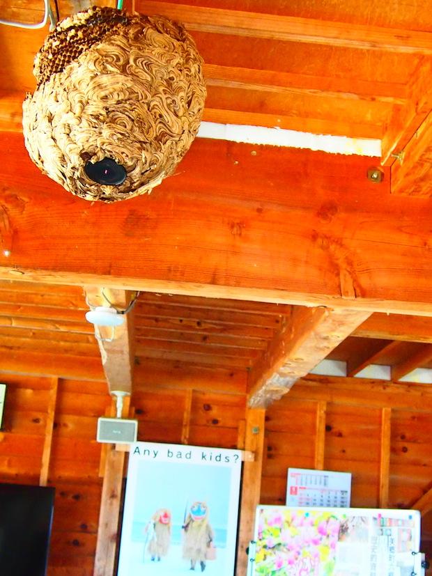 二度見必須のハチの巣オブジェまで!