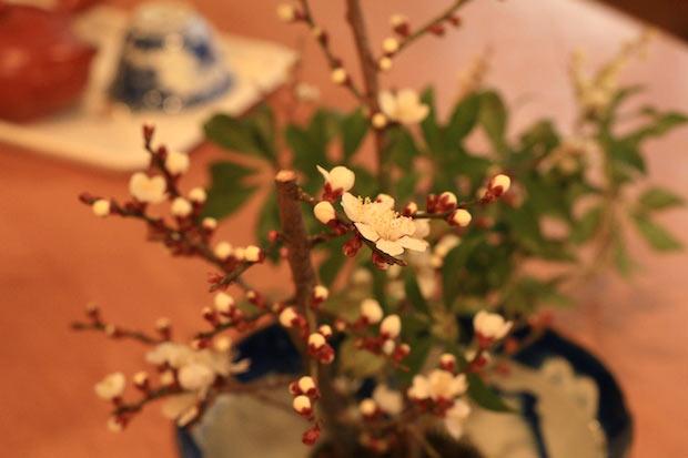 四季折々の行事にまつわる装飾をしたり季節の花を活けたり、自然のうつろいや飾らない美しさを取り入れています。「暮らすように働く」という言葉が浮かびました。