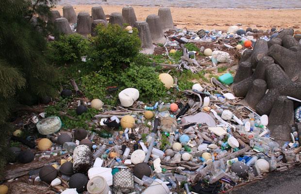 6年間暮らした西表島では、日々島に漂着するゴミを目にしてきたという望月さん。(写真提供:Bring me Shonan)