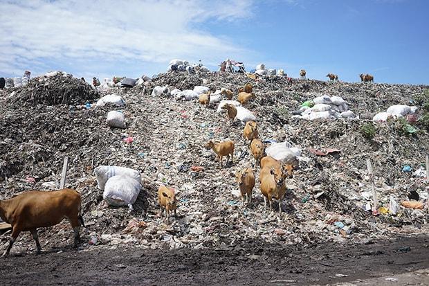 バリ島で圧倒されたごみ集積場。居住地のすぐ近くにあり人体や自然環境への影響が懸念されている。