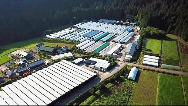 ハルカインターナショナルの岐阜県農場。ここできのこの栽培や研究といったきのこの幅広い事業を展開しています。