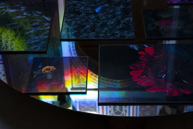 松原慈《Jnan Sbil / Freedom Garden》2014年「The Blind Dream」展(Douiria Mouassine Museum、モロッコ)※参考作品