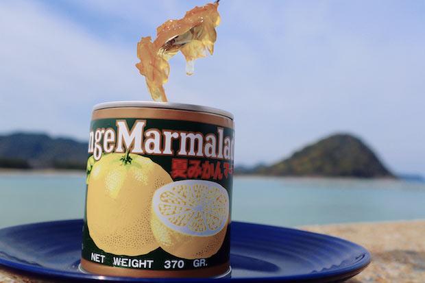 """果肉も使用するため、""""夏みかんそのものの風味""""を味わえます。"""
