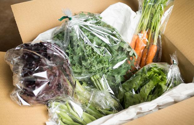 収穫した野菜を小分けにして梱包する作業は時間がかかります。