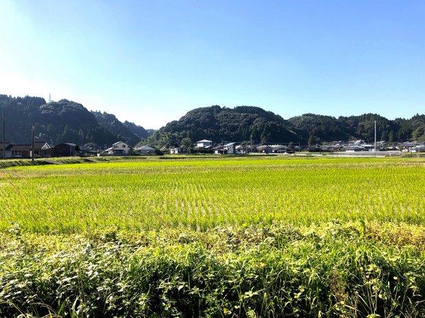 田園風景が広がる集落。