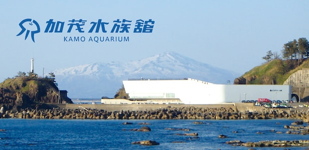 山と海に囲まれる加茂水族館。県唯一の水族館です。