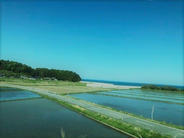 海と田植えが始まる田んぼの風景。