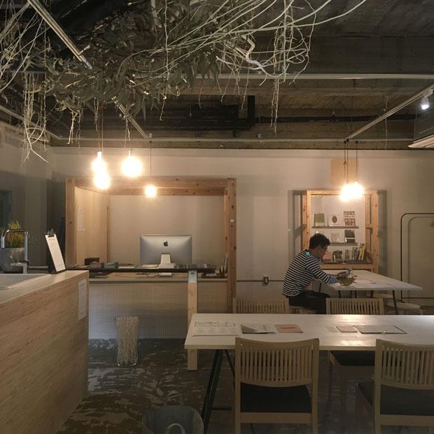 2階改修後。自然光が入りにくく、植物が育たないので天井スラブに枝や葉を使った植物のオブジェを装飾した。