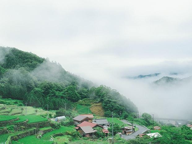棚田が広がる柿木村の風景。
