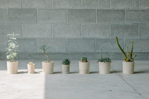 〈高野竹工〉とのコラボレーション 「bamboo pot」