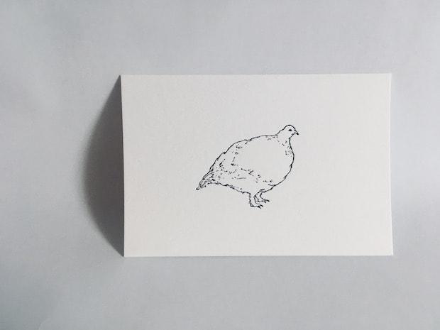 田所真理子さんによるポストカード 活版「雷鳥」。※〈あがたの森〉〈女鳥羽川〉に同梱。