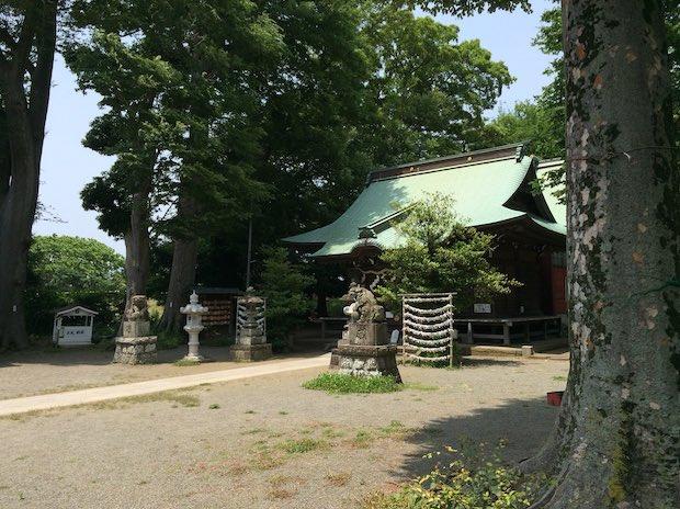 有鹿神社。親しみをこめて「お有鹿様」と呼ばれてきた、相模国で最古の神社。
