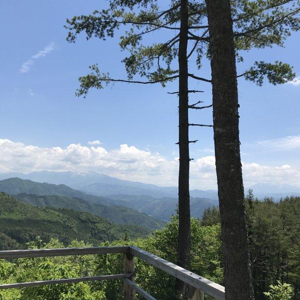 木が豊富な地域である高山。