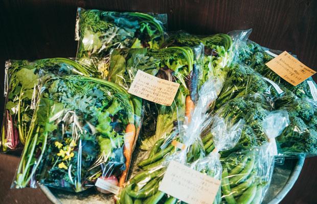 色とりどりの野菜は、東京・青梅の〈Ome Farm〉から。朝、採れたてのものが届く。