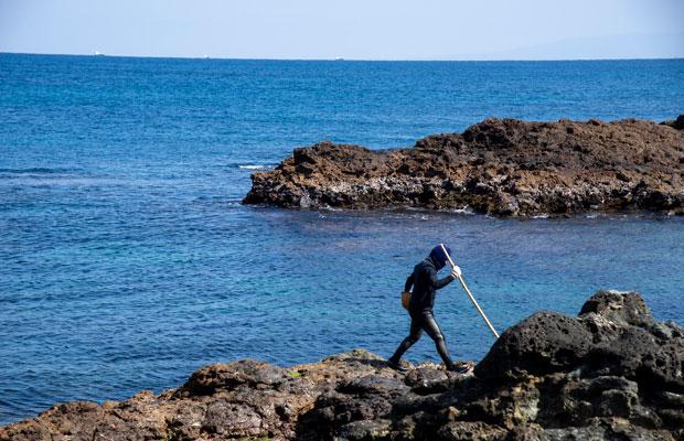 下田特産の海藻「はんば」の漁。83歳の海女さんに同行させてもらって撮影。(撮影:津留崎徹花)
