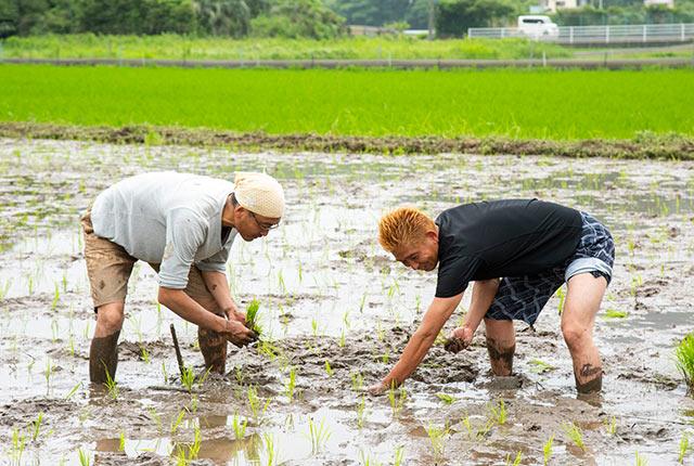 漁師の飯田竜さんと夫も作業中