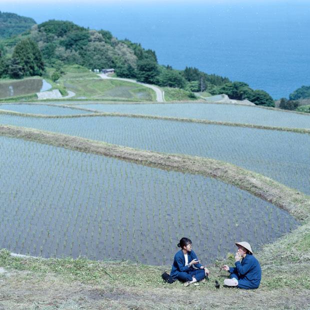 佐渡の岩首地区にある江戸時代から続く棚田。ここで米づくりをする農家さんとの出会いから体験型プロジェクト〈LOCAL LIFE TOURISM〉が生まれた。