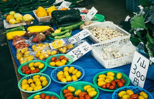 コバカバで提供される料理の食材調達は、「鎌倉野菜」で有名なレンバイで。旬の野菜を使うことで鎌倉の季節の移ろいを伝えてきた。