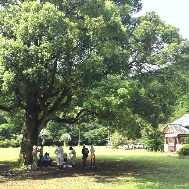 〈リバーバンク森の学校〉には質の高い空間がたっぷりある。
