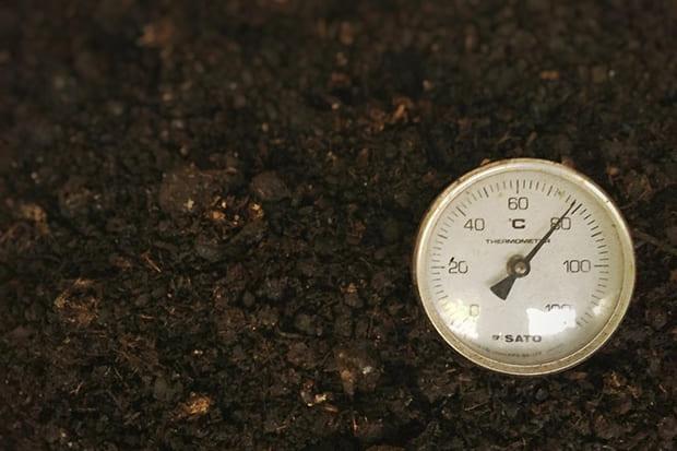 コーヒーカスや米ぬかなど数種類の原料が微生物の働きで発酵する過程。温度は90度まで上る。