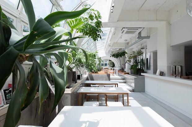 〈KIRO 広島 by THE SHARE HOTELS〉 屋内プールをリノベーションしたシェア型複合ホテル