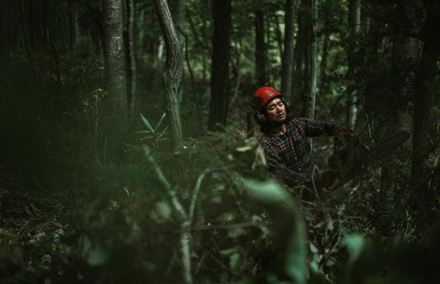 道づくりの作業に支障が出る木を伐る足立さん。足立さんは〈outwoods〉という屋号で札幌を拠点にキコリとして活動している。(photo:Ikuya Sasaki)