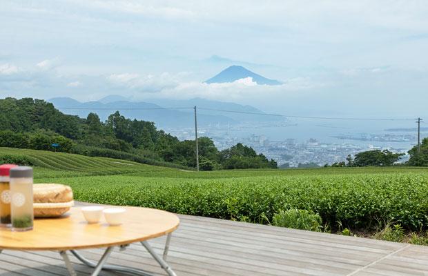 日本平ホテル近くにある〈全景の茶の間〉。目の前に広がるのが〈茶農家集団ぐりむ〉の管理する茶畑。