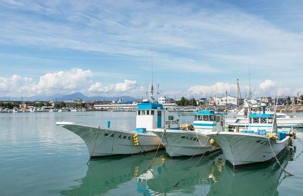 晴れた日には、富士山も見える用宗漁港。毎朝6~7時に50隻以上の漁船が一斉にしらす漁に向かう様子は圧巻だ。