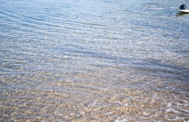 場所によっては、水もとってもきれい。透明ー!