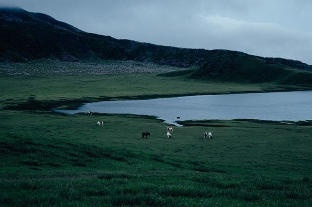 「千年の草原」。阿蘇で暮らす人々は、野焼きによって千年以上も畜産や農業、自然と共生しこの美しい草原を保ってきた。