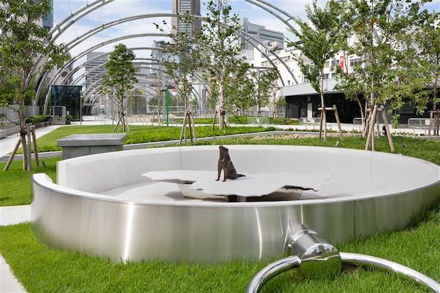 鈴木康広『渋谷の方位磁針|ハチの宇宙』Keiko Chiba @ Nacasa & Partners