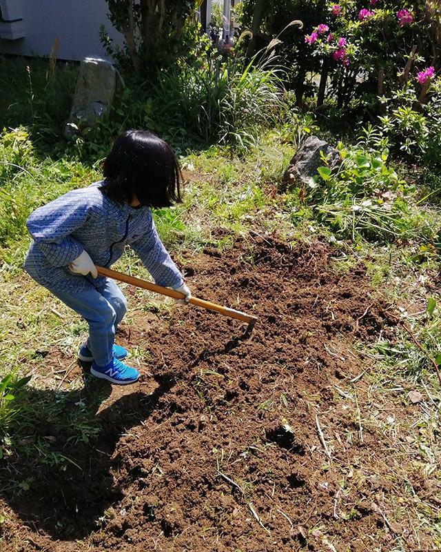 庭を耕す娘