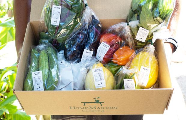 〈HOMEMAMERSの旬野菜セット〉。ひとつひとつの野菜に名前と特徴や食べ方などの説明80字を書いた名札をつけるようにしました。