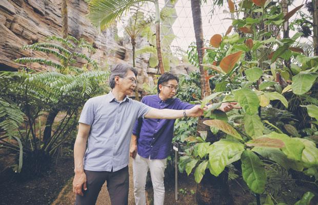 苗木を購入した人のなかには、すでに花を咲かせたという上級者も。